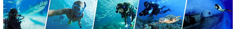 diving_multi